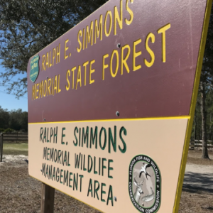 Ralph E Simmons State Forest
