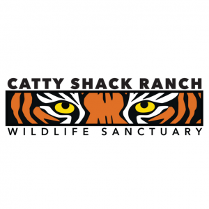 Catty Shack Wildlife Sanctuary: Facebook Live Night Feedings