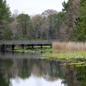 UNF Recreation Trails